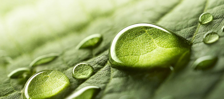 Intermittierendes Fasten – der Stoffwechsel Booster